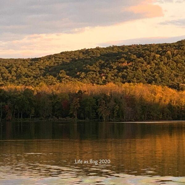 Watkins Glen NY