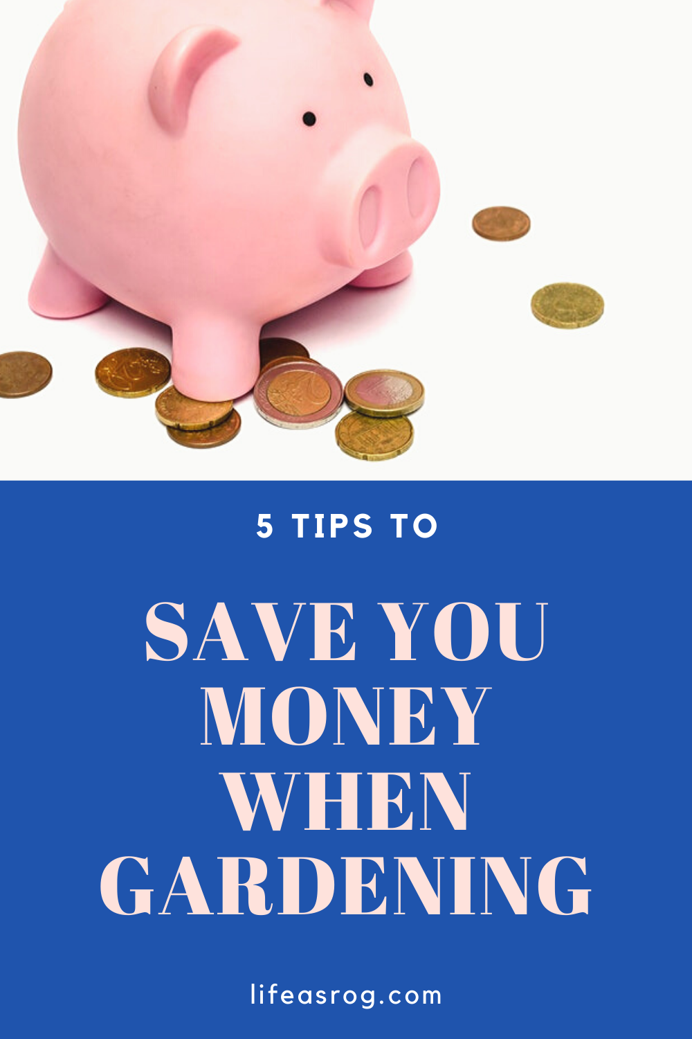 5 Tips to Save You Money when Gardening