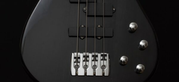 Back to the Bass-ics