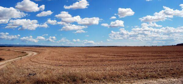 Homestead Land